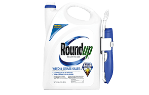Roundup Ready-To-Use Weed