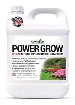 Liquid Ryegrass Lawn Fertilizer