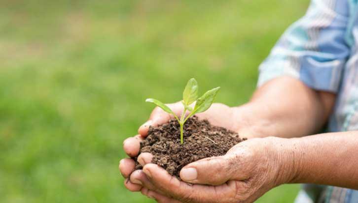 How long does fertilizer last
